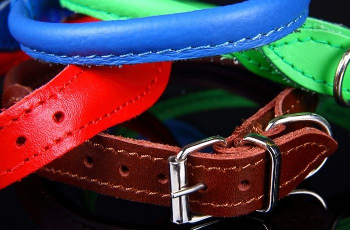 Top Quality Rolled Leather Dog Collars Small Uk